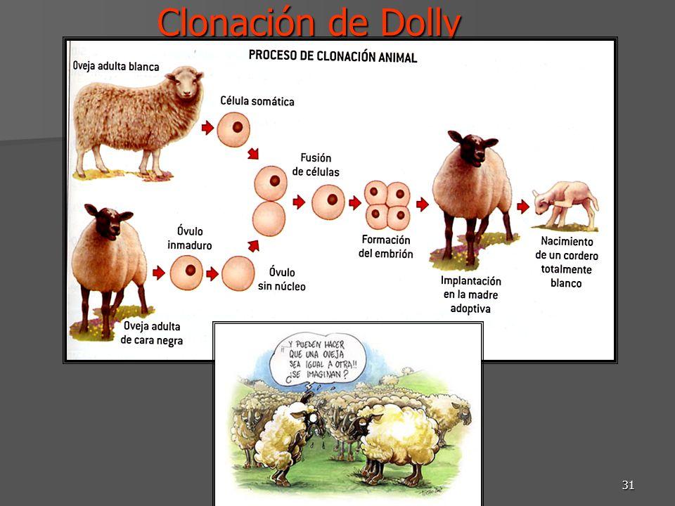 DRM-Biotecnología SB 201231 Clonación de Dolly