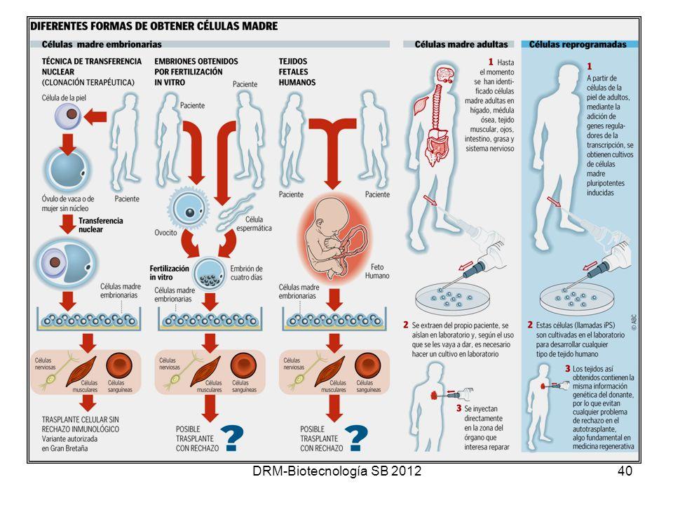 DRM-Biotecnología SB 201240