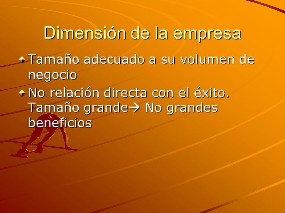 Dimensión de la empresa Tamaño adecuado a su volumen de negocio No relación directa con el éxito. Tamaño grande No grandes beneficios