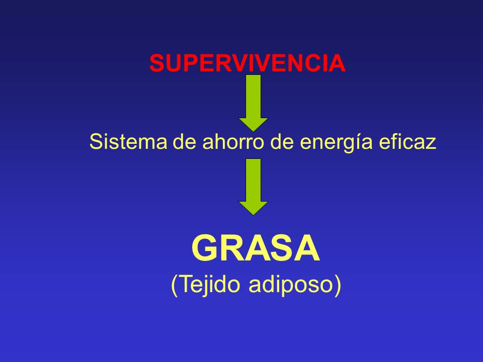 SUPERVIVENCIA Sistema de ahorro de energía eficaz GRASA (Tejido adiposo) 1 gr de : -grasa: 9 calorías - carbohidratos: 4 calorías - proteínas: 4 calorías Y la grasa NO precisa agua para su almacenamiento