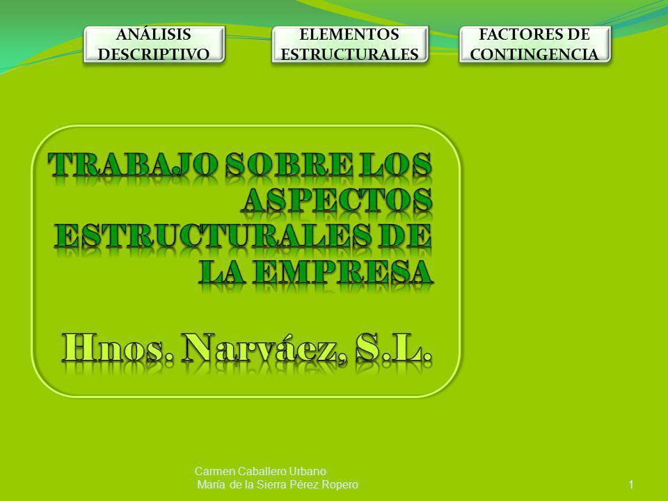 Carmen Caballero Urbano María de la Sierra Pérez Ropero1 ANÁLISIS DESCRIPTIVO ELEMENTOS ESTRUCTURALES FACTORES DE CONTINGENCIA