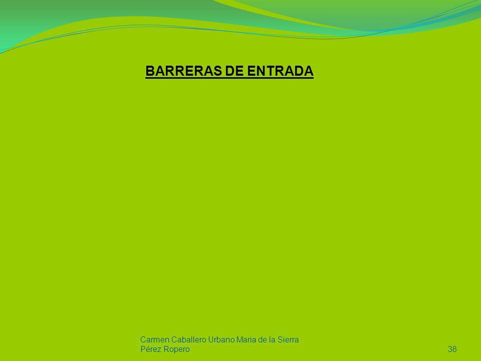 Carmen Caballero Urbano Maria de la Sierra Pérez Ropero38 BARRERAS DE ENTRADA