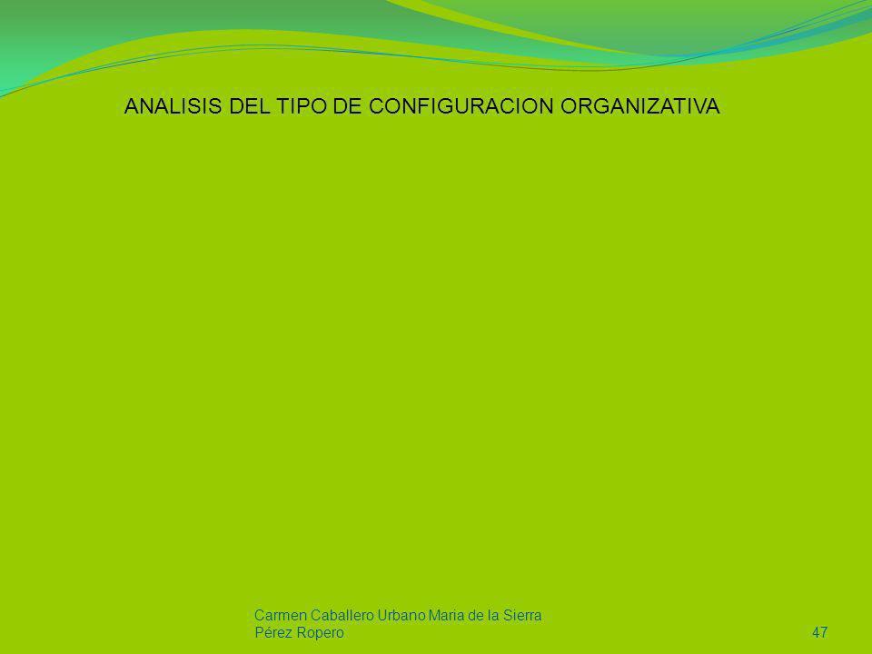 Carmen Caballero Urbano Maria de la Sierra Pérez Ropero47 ANALISIS DEL TIPO DE CONFIGURACION ORGANIZATIVA