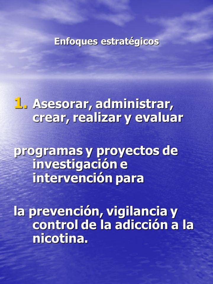 Enfoques estratégicos 1. Asesorar, administrar, crear, realizar y evaluar programas y proyectos de investigación e intervención para la prevención, vi