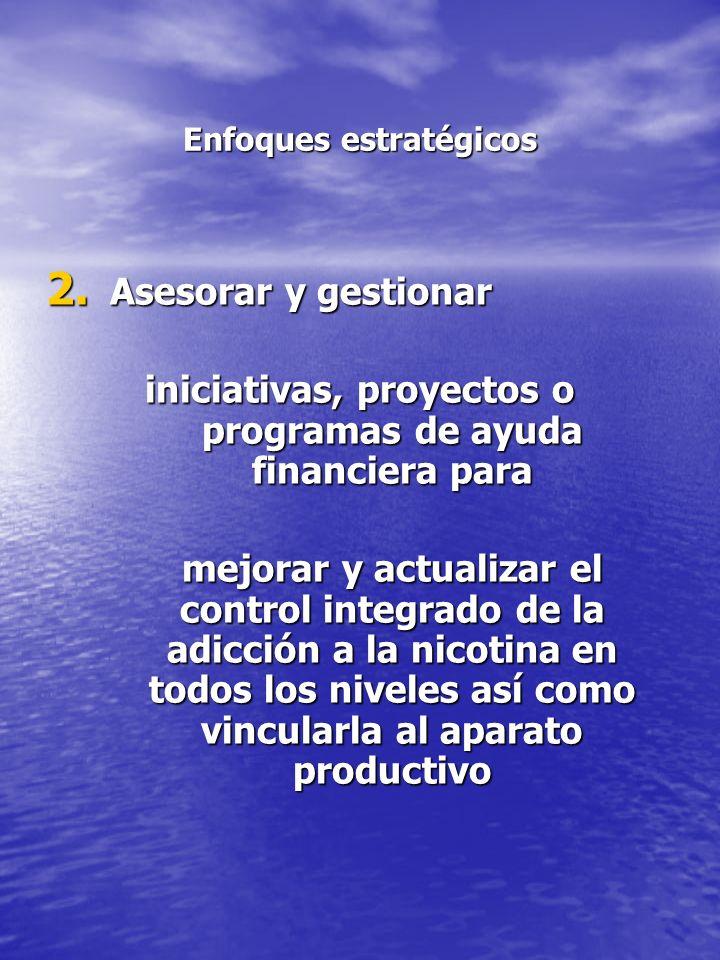 Enfoques estratégicos 2. Asesorar y gestionar iniciativas, proyectos o programas de ayuda financiera para mejorar y actualizar el control integrado de