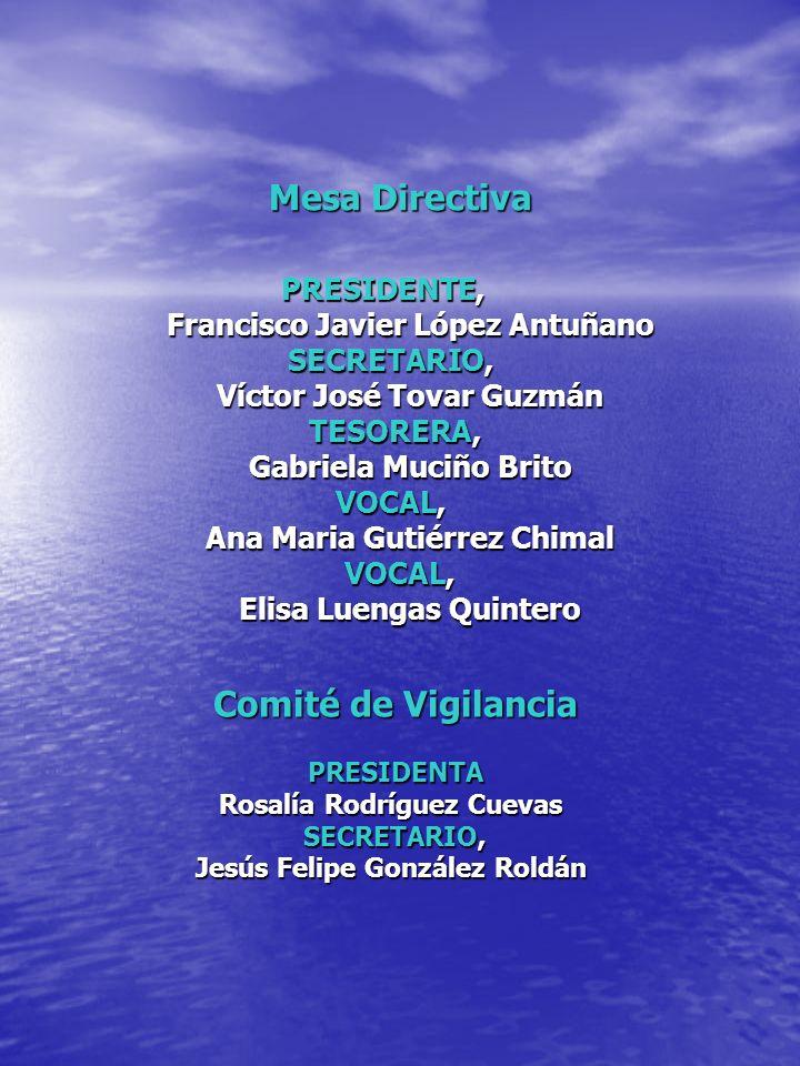 Mesa Directiva PRESIDENTE, PRESIDENTE, Francisco Javier López Antuñano SECRETARIO, Víctor José Tovar Guzmán TESORERA, TESORERA, Gabriela Muciño Brito