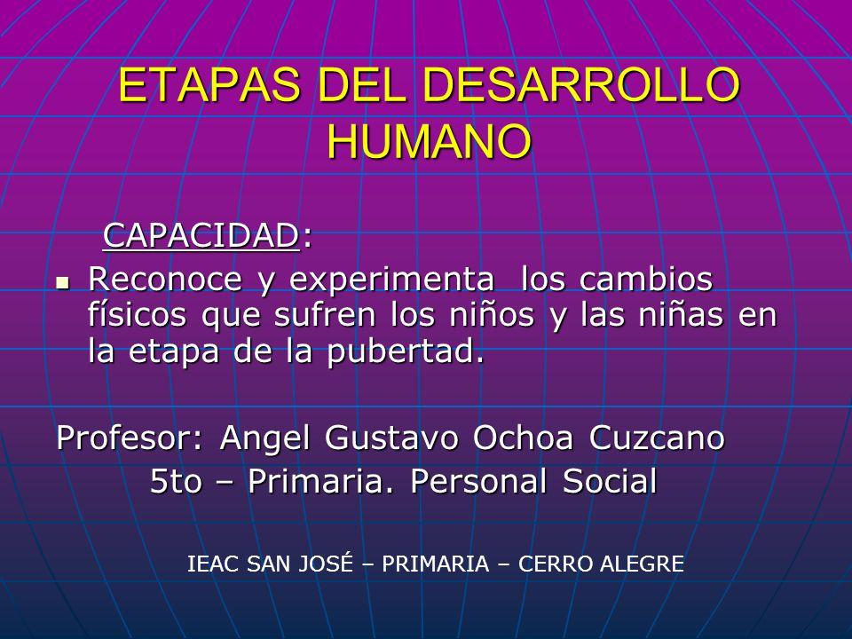 ETAPAS DEL DESARROLLO HUMANO CAPACIDAD: CAPACIDAD: Reconoce y experimenta los cambios físicos que sufren los niños y las niñas en la etapa de la puber