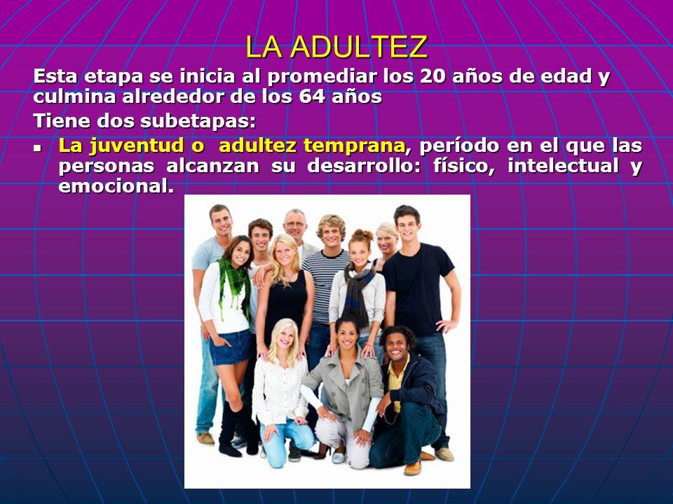 LA ADULTEZ Esta etapa se inicia al promediar los 20 años de edad y culmina alrededor de los 64 años Tiene dos subetapas: La juventud o adultez tempran