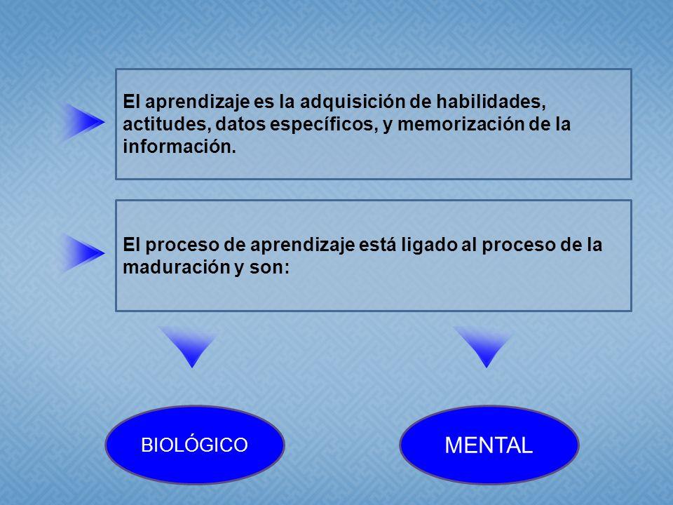 El aprendizaje es la adquisición de habilidades, actitudes, datos específicos, y memorización de la información. El proceso de aprendizaje está ligado