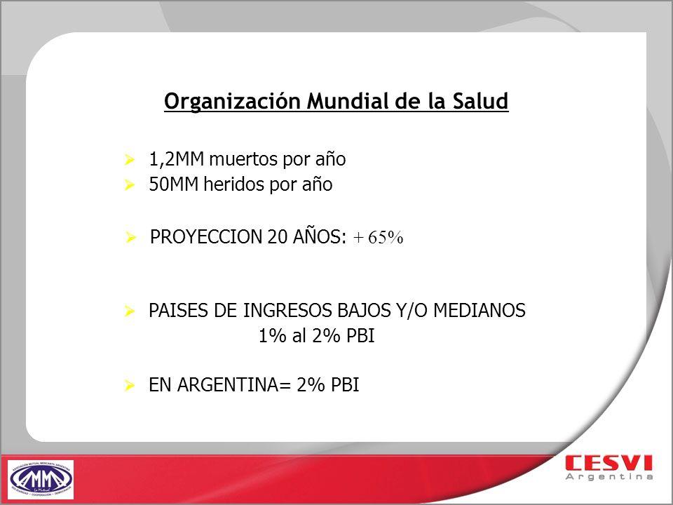 Organización Mundial de la Salud PAISES DE INGRESOS BAJOS Y/O MEDIANOS 1% al 2% PBI EN ARGENTINA= 2% PBI 1,2MM muertos por año 50MM heridos por año PR