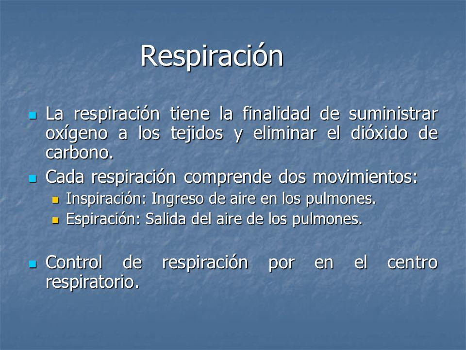 Respiración La respiración normal consiste en la sucesión rítmica y fluida de los movimientos de expansión (inspiración) y de retracción (espiración t