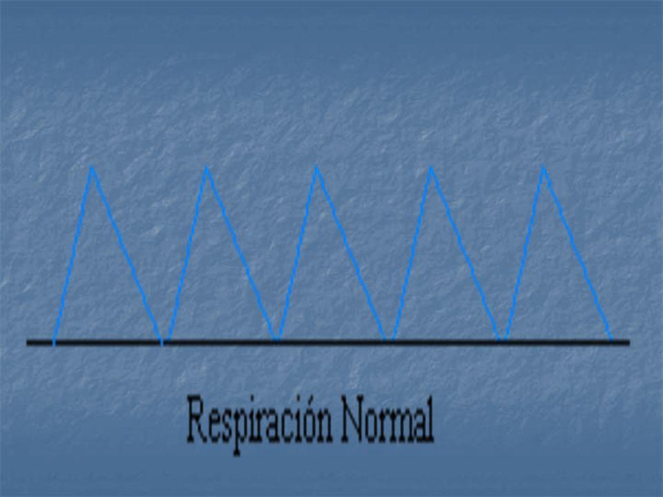La frecuencia respiratoria se define como las veces que se respira (ciclo de respiración: se contraen y se expanden los pulmones) por unidad de tiempo