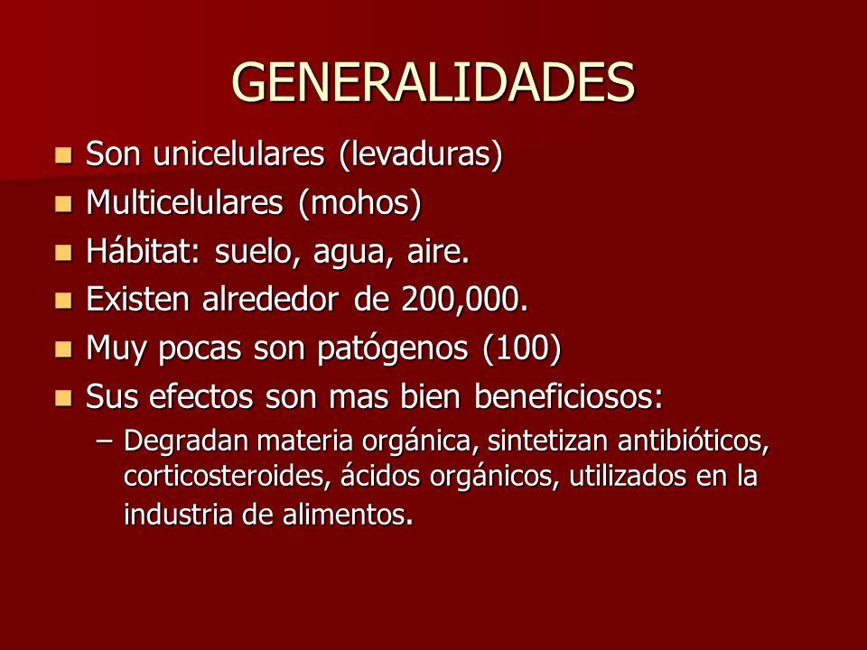 GENERALIDADES Son unicelulares (levaduras) Son unicelulares (levaduras) Multicelulares (mohos) Multicelulares (mohos) Hábitat: suelo, agua, aire. Hábi