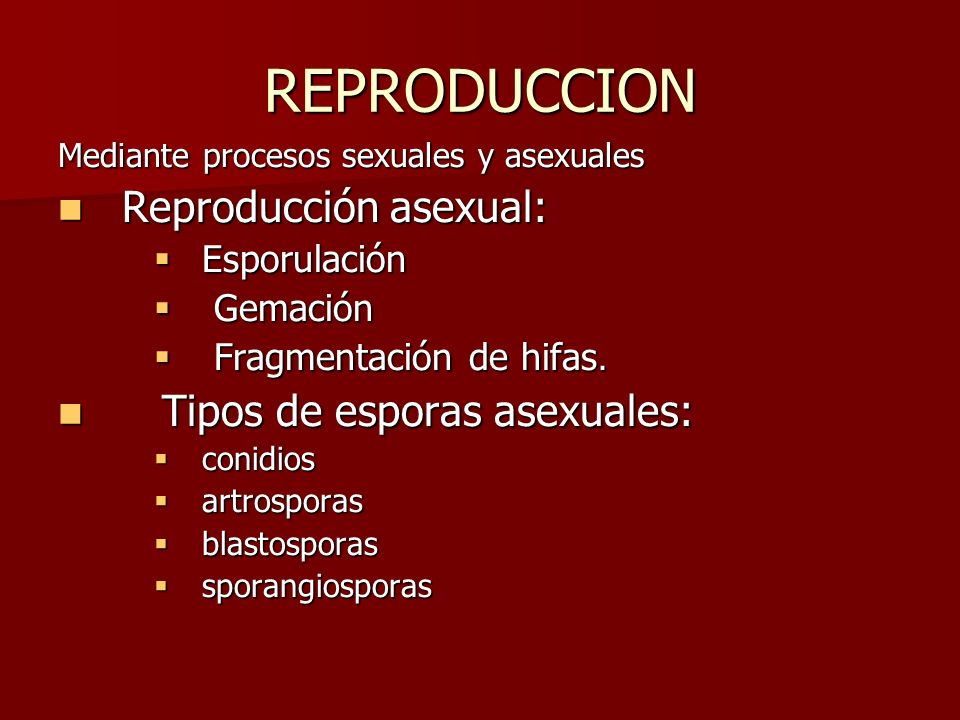 REPRODUCCION Reproducción Sexual.Reproducción Sexual.