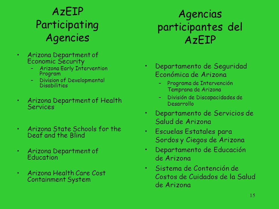 16 Lead Agency Department of Economic Security Arizona Early Intervention Program DES AzEIP Division of Development Disabilities ADHS Arizona Department of Health Services ASDB Arizona School for the Deaf and Blind AHCCCS Arizona Health Care Cost Containment System ADE Arizona Department of Education