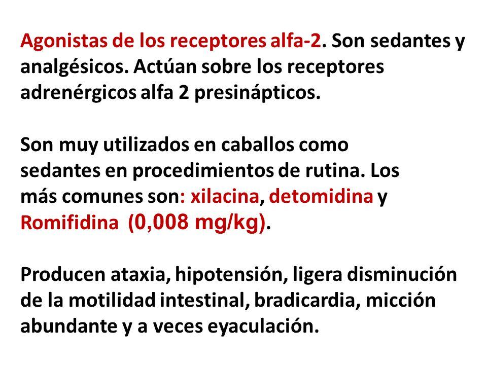 Agonistas de los receptores alfa-2. Son sedantes y analgésicos. Actúan sobre los receptores adrenérgicos alfa 2 presinápticos. Son muy utilizados en c