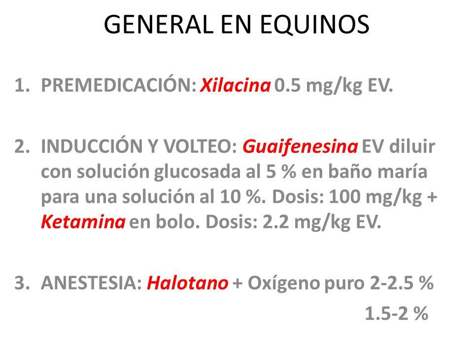 GENERAL EN EQUINOS 1.PREMEDICACIÓN: Xilacina 0.5 mg/kg EV. 2.INDUCCIÓN Y VOLTEO: Guaifenesina EV diluir con solución glucosada al 5 % en baño maría pa