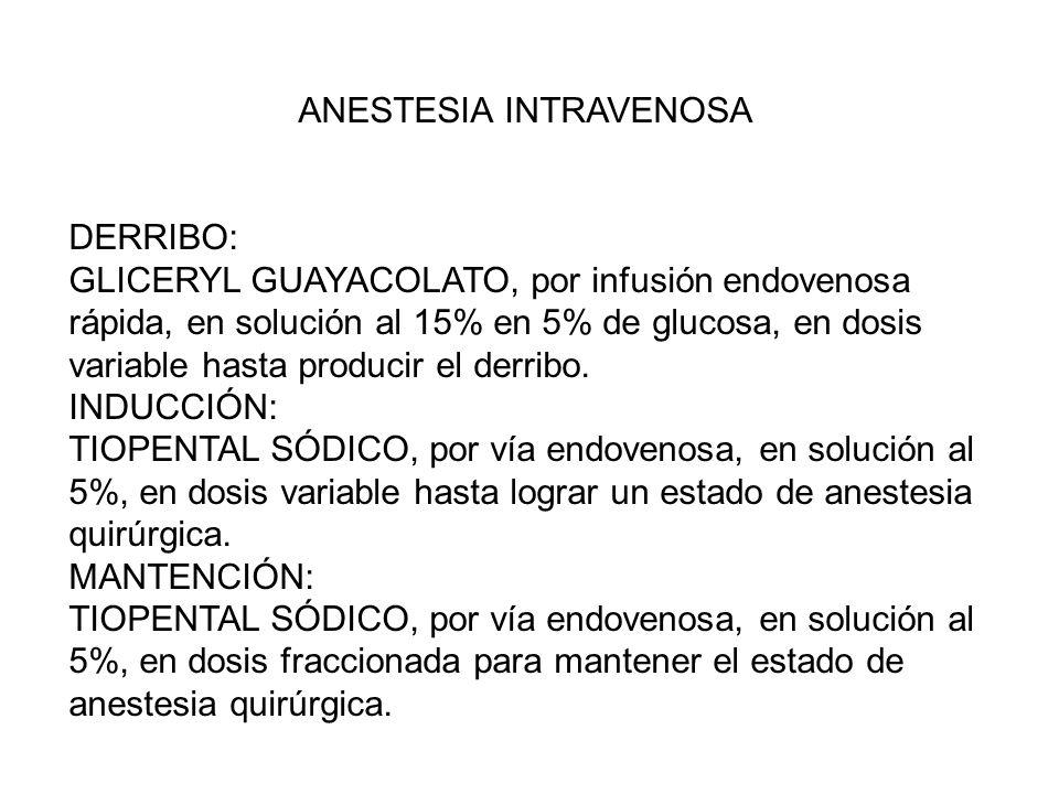 ANESTESIA INTRAVENOSA DERRIBO: GLICERYL GUAYACOLATO, por infusión endovenosa rápida, en solución al 15% en 5% de glucosa, en dosis variable hasta prod