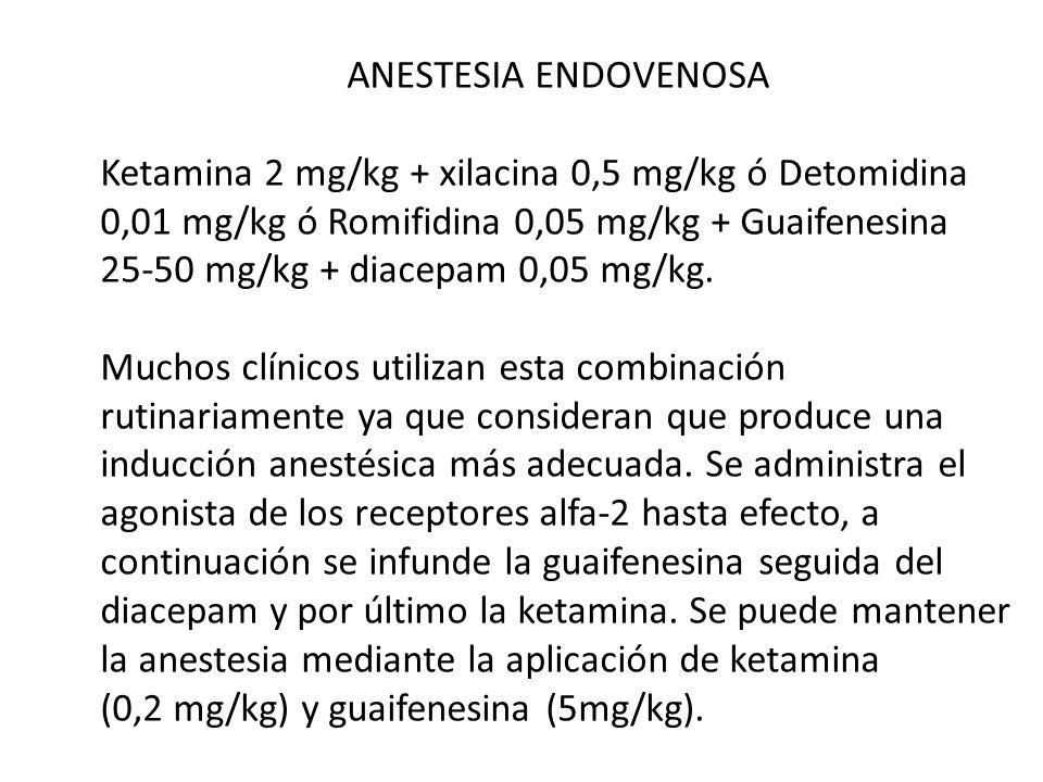 ANESTESIA ENDOVENOSA Ketamina 2 mg/kg + xilacina 0,5 mg/kg ó Detomidina 0,01 mg/kg ó Romifidina 0,05 mg/kg + Guaifenesina 25-50 mg/kg + diacepam 0,05