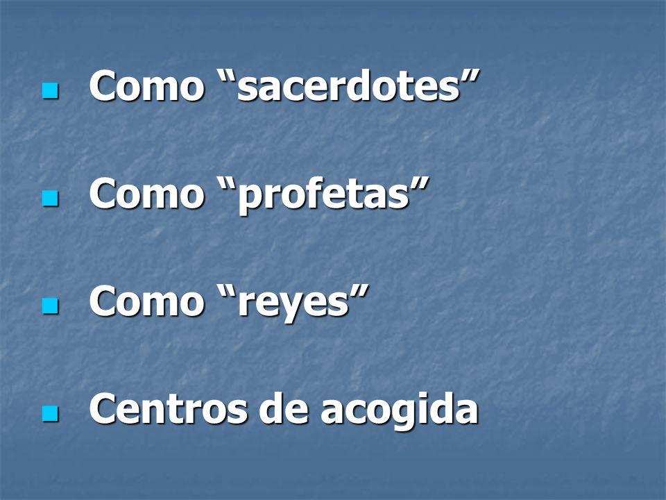 Como sacerdotes Como sacerdotes Como profetas Como profetas Como reyes Como reyes Centros de acogida Centros de acogida