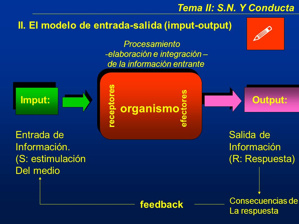 Tema II: S.N.Y Conducta II.