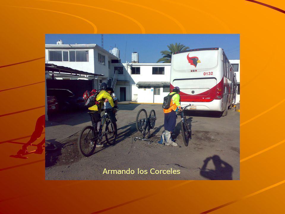 Armando los Corceles