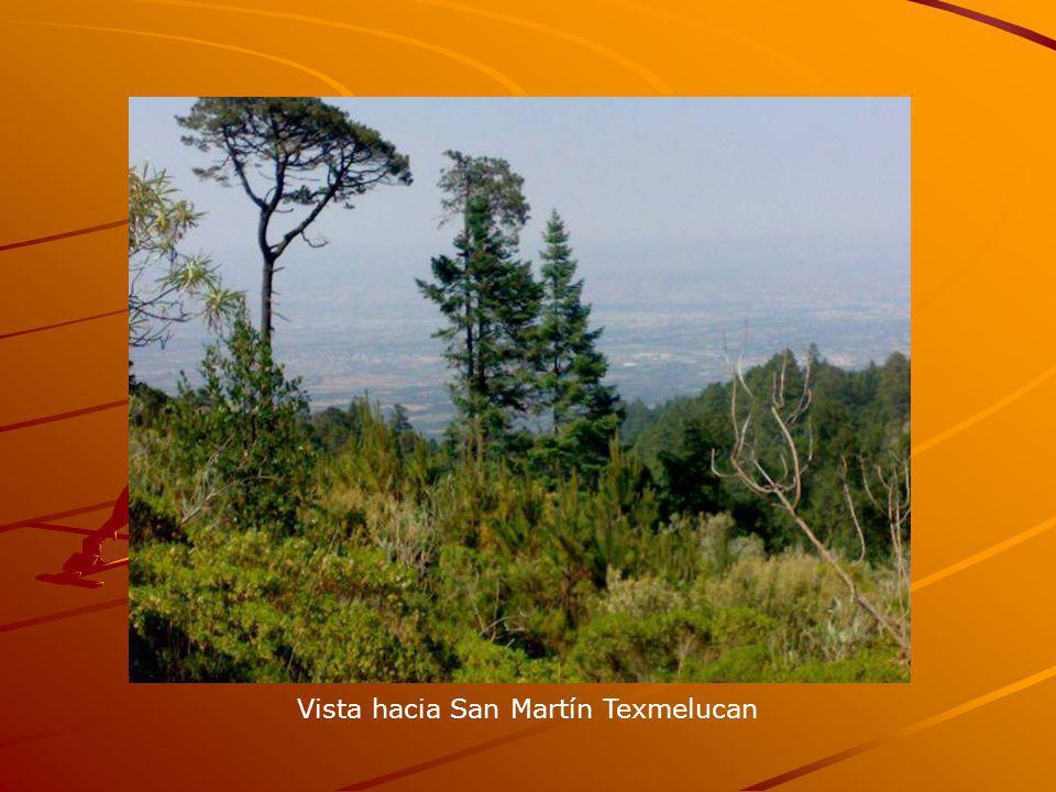Vista hacia San Martín Texmelucan