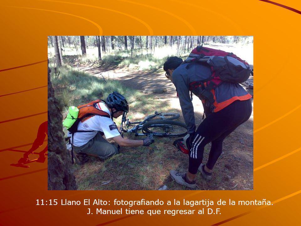 11:15 Llano El Alto: fotografiando a la lagartija de la montaña. J. Manuel tiene que regresar al D.F.