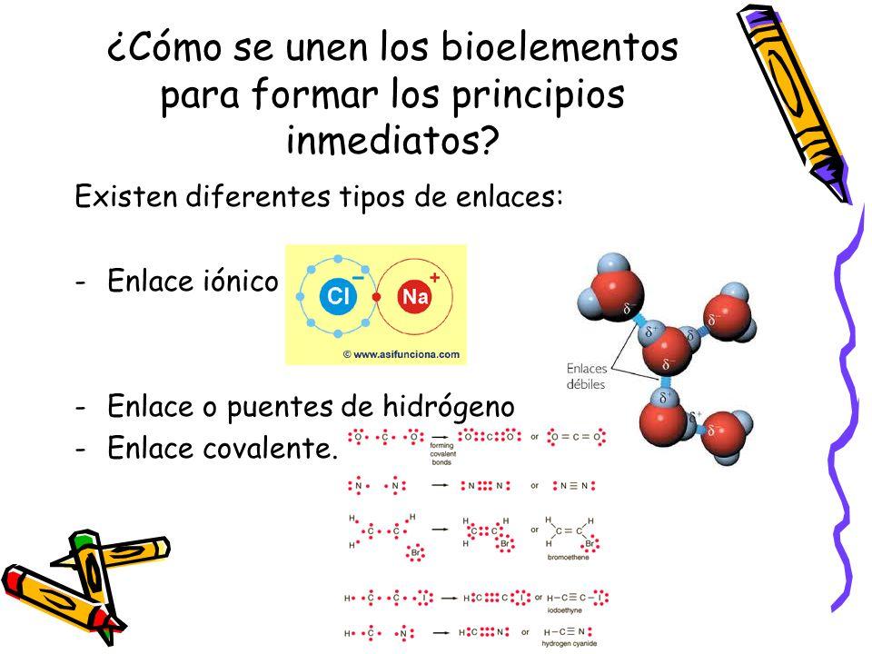 ¿Cómo se unen los bioelementos para formar los principios inmediatos? Existen diferentes tipos de enlaces: -Enlace iónico -Enlace o puentes de hidróge
