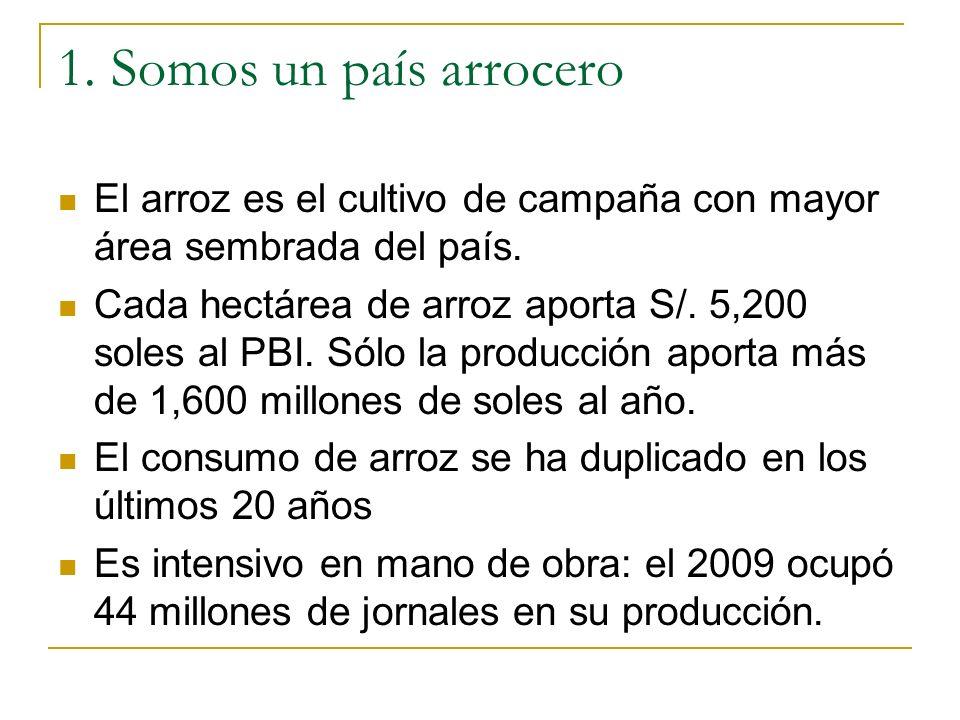 1. Somos un país arrocero El arroz es el cultivo de campaña con mayor área sembrada del país. Cada hectárea de arroz aporta S/. 5,200 soles al PBI. Só