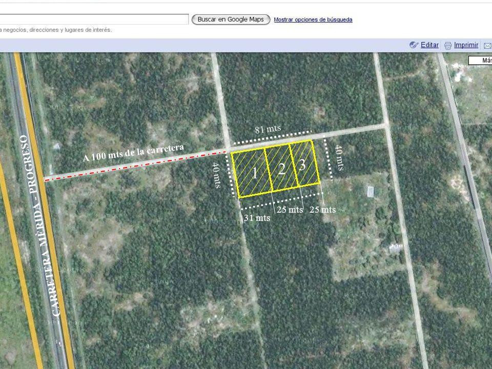 81 mts 40 mts 31 mts 25 mts CARRETERA MÈRIDA - PROGRESO A 100 mts de la carretera 1 2 3
