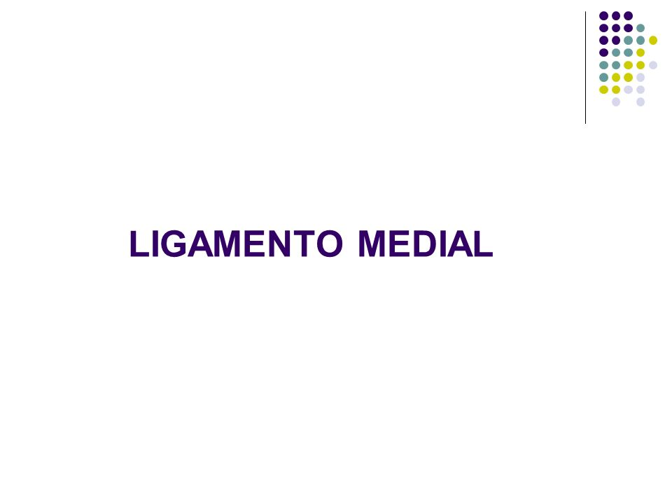 LIGAMENTO MEDIAL