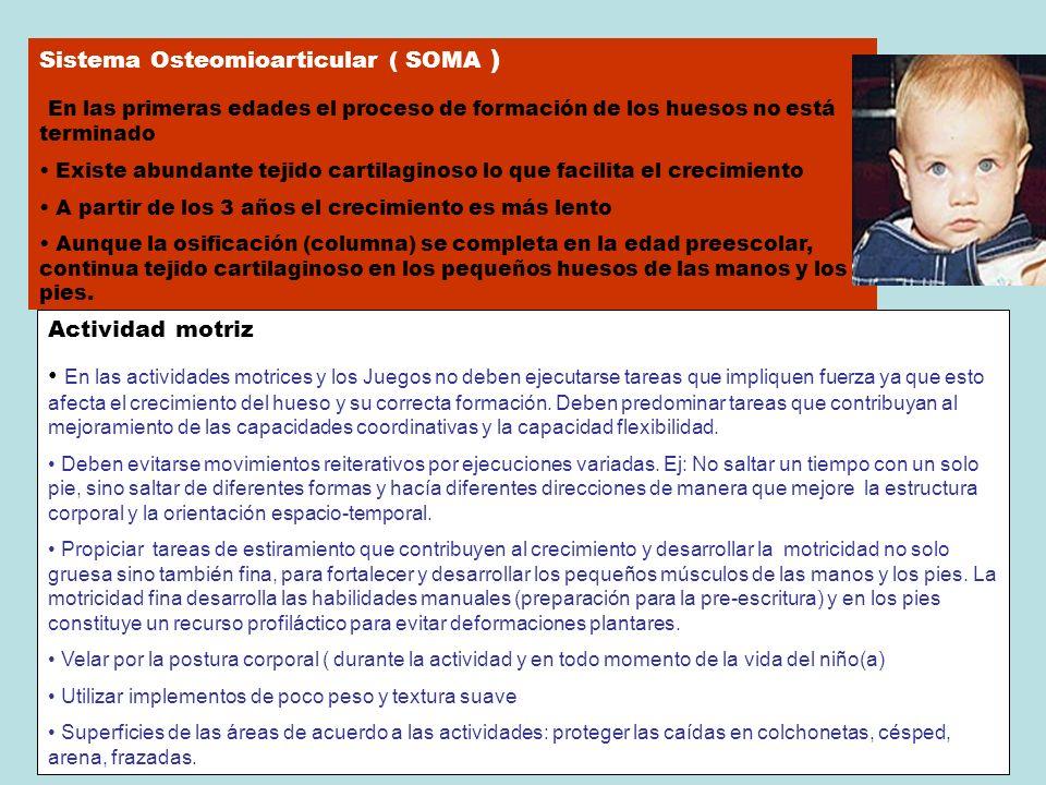 Sistema Osteomioarticular ( SOMA ) En las primeras edades el proceso de formación de los huesos no está terminado Existe abundante tejido cartilaginos