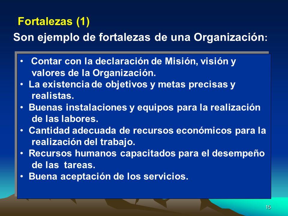 15 Contar con la declaración de Misión, visión y valores de la Organización. La existencia de objetivos y metas precisas y realistas. Buenas instalaci