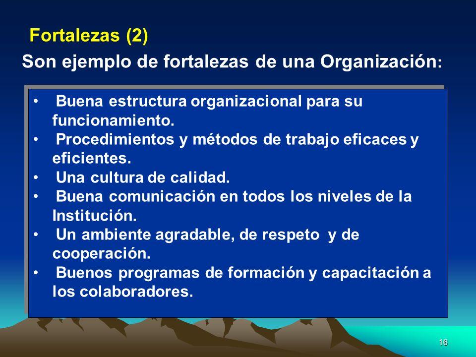 16 Buena estructura organizacional para su funcionamiento. Procedimientos y métodos de trabajo eficaces y eficientes. Una cultura de calidad. Buena co
