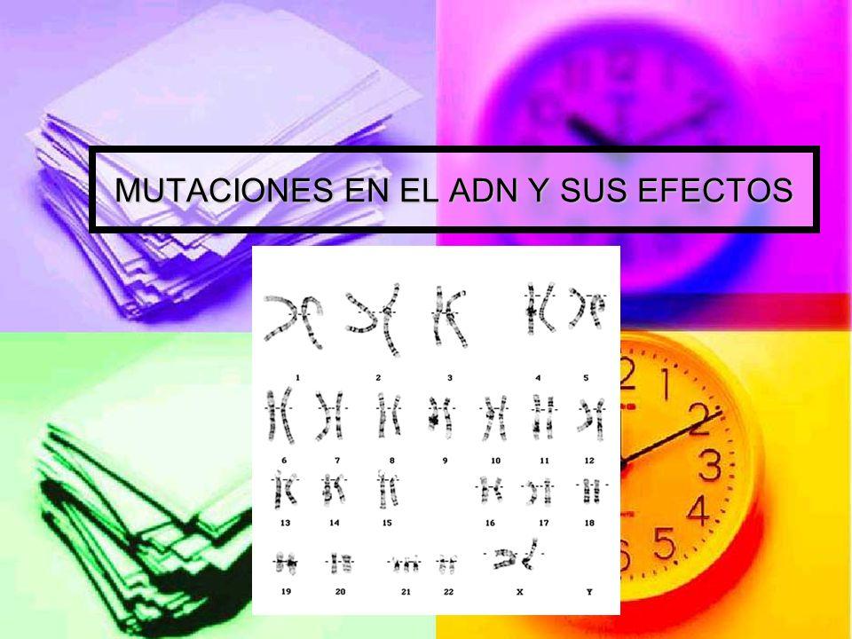 MUTACIONES EN EL ADN Y SUS EFECTOS