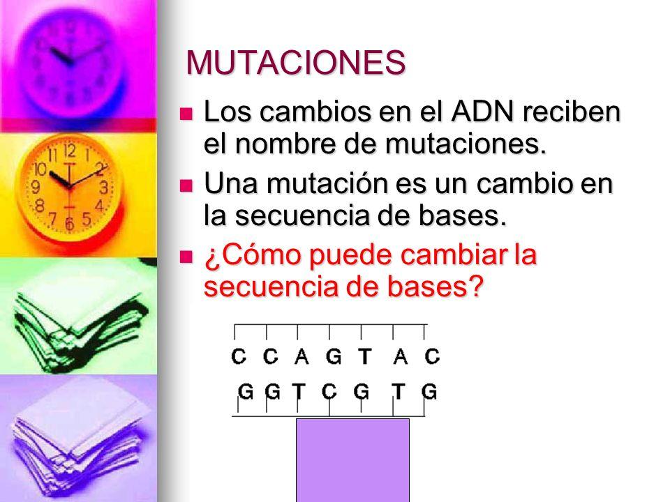 MUTACIONES Los cambios en el ADN reciben el nombre de mutaciones. Los cambios en el ADN reciben el nombre de mutaciones. Una mutación es un cambio en