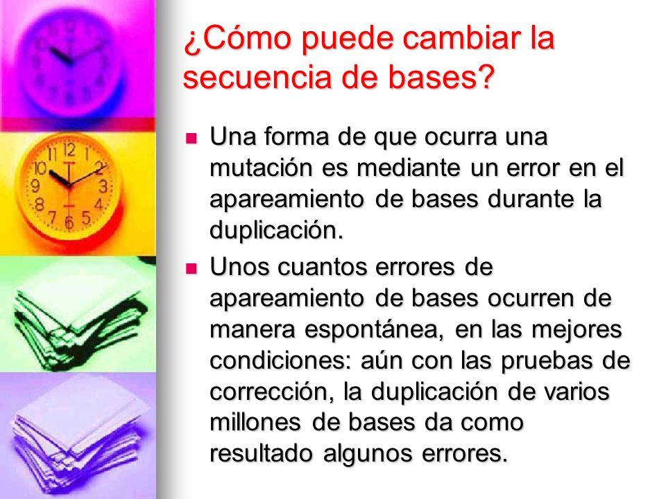 ¿Cómo puede cambiar la secuencia de bases? Una forma de que ocurra una mutación es mediante un error en el apareamiento de bases durante la duplicació