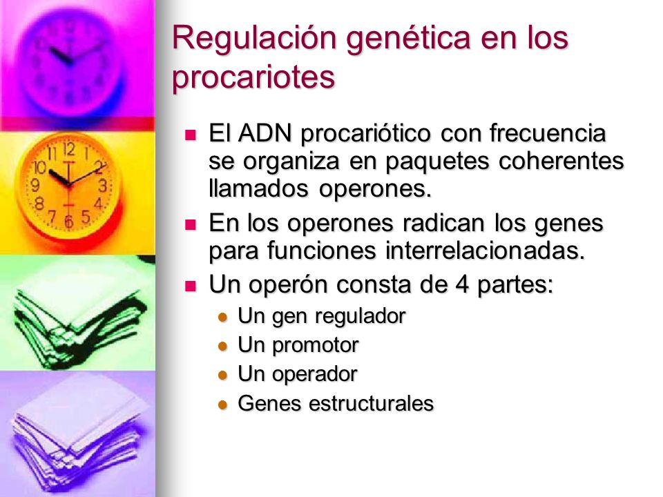 Regulación genética en los procariotes El ADN procariótico con frecuencia se organiza en paquetes coherentes llamados operones. El ADN procariótico co
