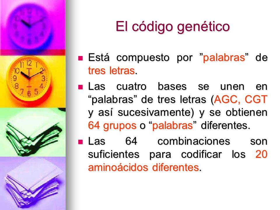 REGULACIÓN GENÉTICA Casi todas las células del cuerpo tienen un mismo ADN, pero no usan la totalidad del ADN todo el tiempo.