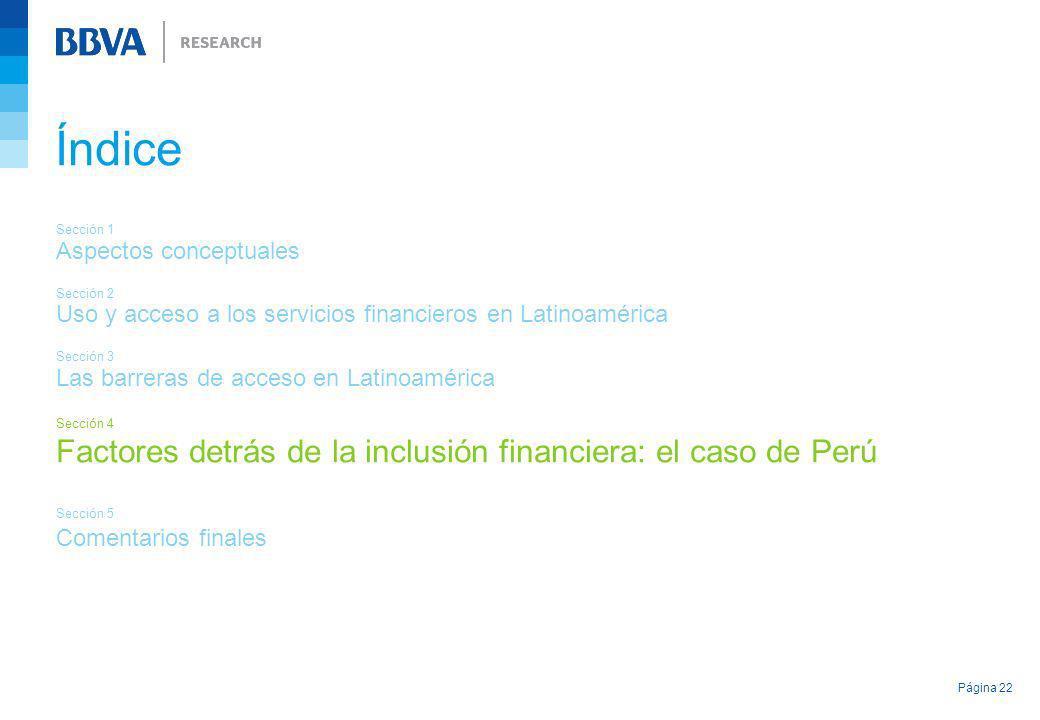 Página 22 Índice Sección 1 Aspectos conceptuales Sección 2 Uso y acceso a los servicios financieros en Latinoamérica Sección 3 Las barreras de acceso