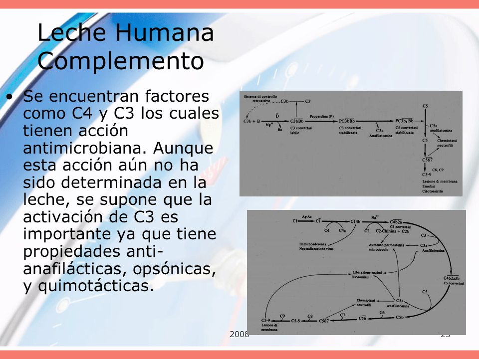 200823 Leche Humana Complemento Se encuentran factores como C4 y C3 los cuales tienen acción antimicrobiana. Aunque esta acción aún no ha sido determi