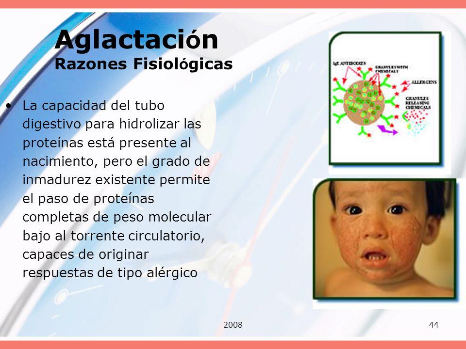 200844 Aglactaci ó n Razones Fisiol ó gicas La capacidad del tubo digestivo para hidrolizar las proteínas está presente al nacimiento, pero el grado d