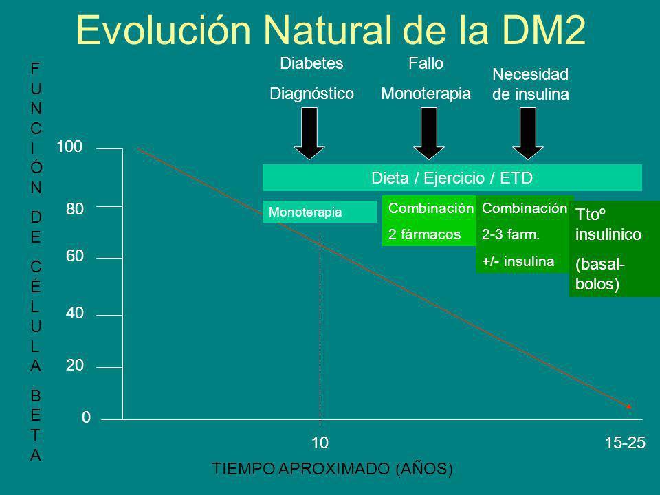 Evolución Natural de la DM2 0 20 40 60 80 100 1015-25 Monoterapia Combinación 2 fármacos Combinación 2-3 farm. +/- insulina Ttoº insulinico (basal- bo