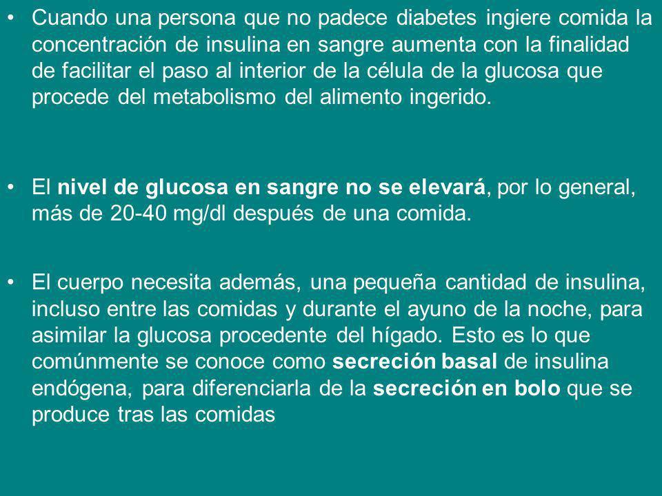 Cuando una persona que no padece diabetes ingiere comida la concentración de insulina en sangre aumenta con la finalidad de facilitar el paso al inter
