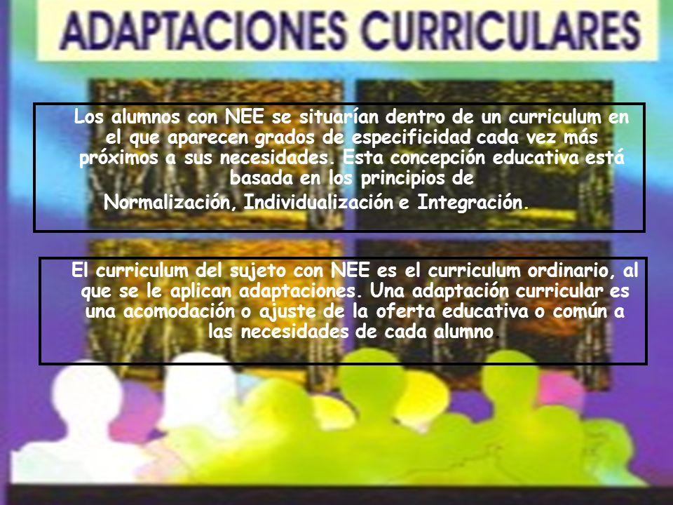 Los alumnos con NEE se situarían dentro de un curriculum en el que aparecen grados de especificidad cada vez más próximos a sus necesidades. Esta conc