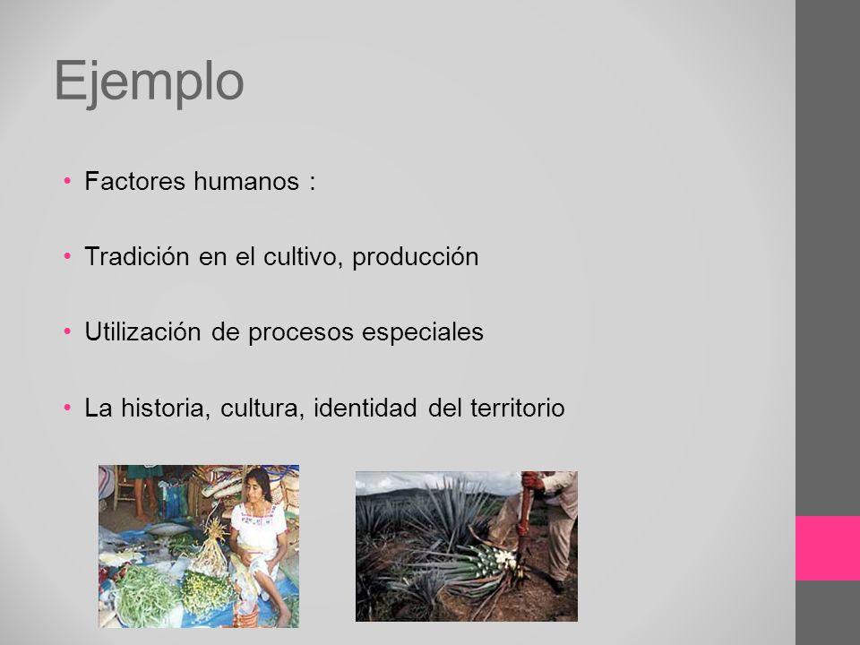 Ejemplo Factores humanos : Tradición en el cultivo, producción Utilización de procesos especiales La historia, cultura, identidad del territorio