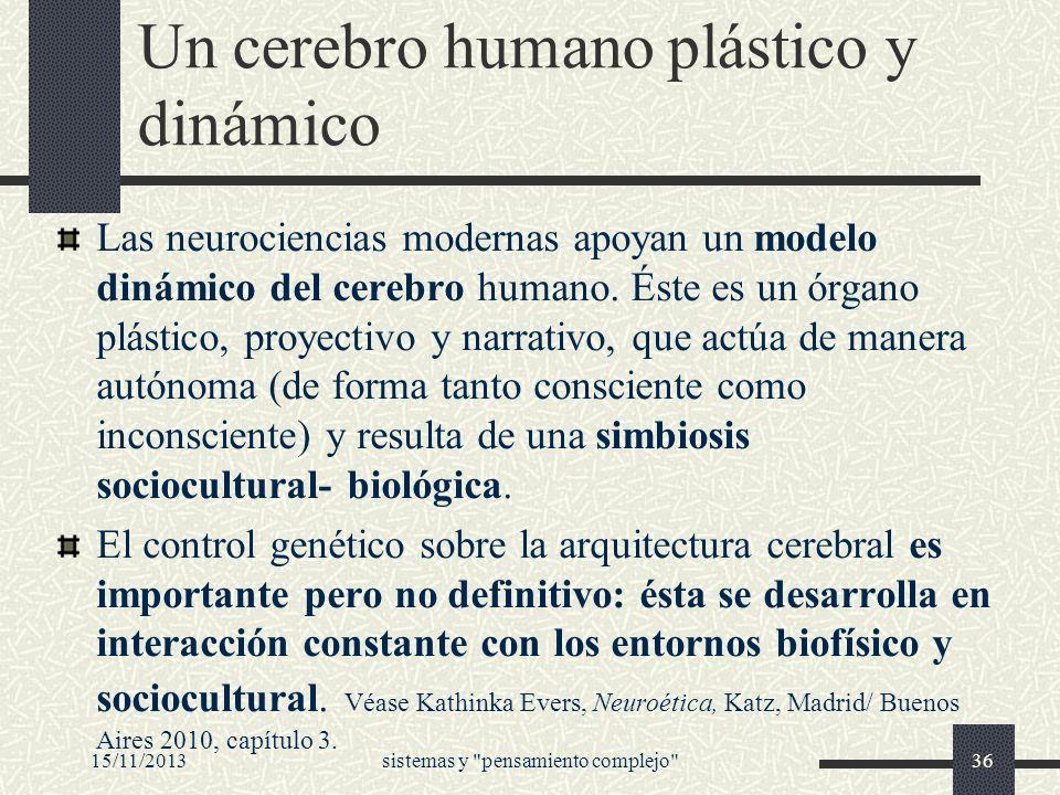 Un cerebro humano plástico y dinámico Las neurociencias modernas apoyan un modelo dinámico del cerebro humano. Éste es un órgano plástico, proyectivo
