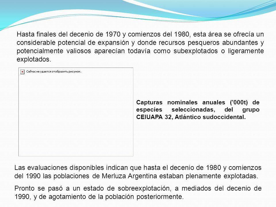 A comienzos de 1990 las poblaciones de Merluza Argentina estaban explotadas a la tasa de la reproducción del recurso, pero pronto se pasó a un estado de sobreexplotación con un grave agotamiento de la biomasa de la población reproductora.