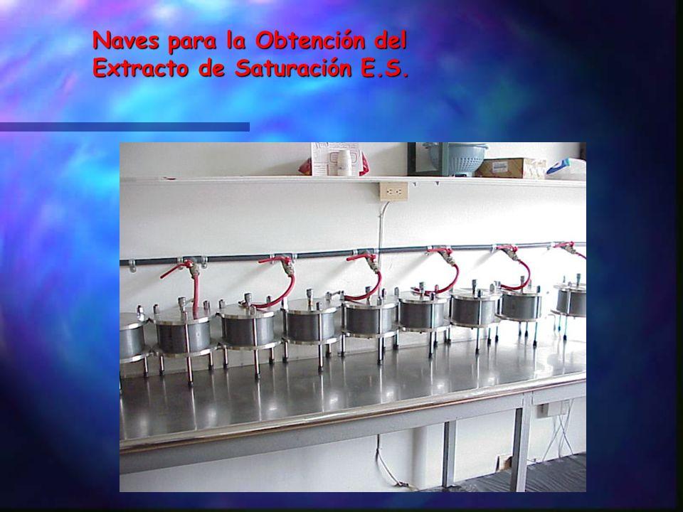 Extracto de Saturación (E.S.) Líquido que se puede extraer a una pasta saturada mediante filtración a presión ó al vacío. (Ver extractores de solución